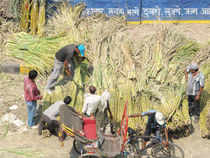 Bajaj Hindusthan, the country's largest sugar producer, today posted a standalone net profit of Rs 1.95 crore for the second quarter.