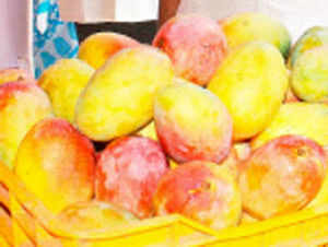 Consumers in the United States are finding it difficult to buy Indian mangoes due to the high prices as compared to the ones imported from South American countries