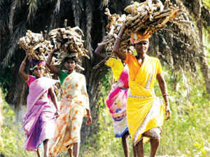 An intensification will result in greater harassment of local tribals, while retarding the government's attempts to fast-track development in Chhattisgarh
