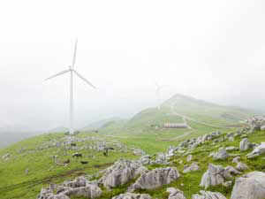 Investments in renewable energy sector will be sluggish in the short term globally, including in India, says a report.