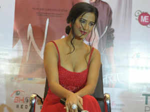 If you are expecting the barefaced boldness of Poonam Pandey's provocative tweets from her debut film, you would be better-off glued to her social media account.
