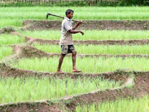 The Union Government has proposed to provide land to the landless. Nearly half of the country's rural population is absolutely or relatively landless.