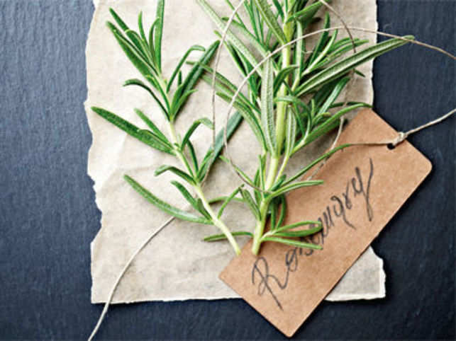 Dew of the sea: The potent presence of Rosemary - The Economic Times