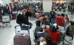 Domestic flyer numbers grew mere 1% this year
