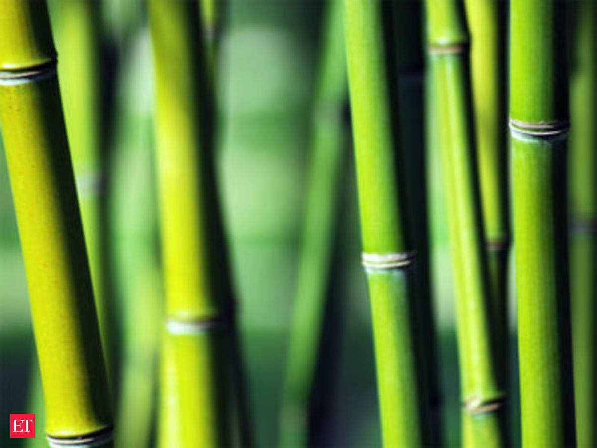 Now, even bamboo sticks a scarce resource: Agarbatti makers