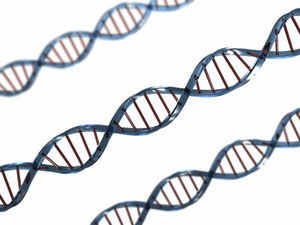 Now, if genetic matching can only assert commonality of ancestry and not direct descent, where does that leave N D Tiwari