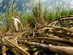 Staring at an estimated everhigh surplus stock of 10 million tonne of sugar in the coming season (October 2013-September 2014), Indian Sugar Mills Association (ISMA) said that high cane cost and low sugar prices have made the working of the industry unviable.