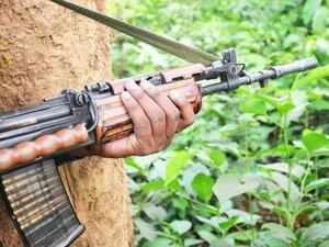 Nearly 12,000 civilians and 3,000 security personnel were killed by Naxals in the last three decades, according to the Home Ministry.