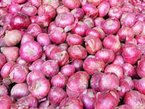 Onion prices continued to rule at a record Rs 100 per kg in parts of the country for the second day today as a hapless government waited for increased supply of new crops to reach the markets