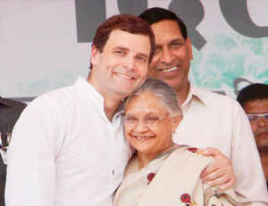 Rahul Gandhi on Sunday hard sold the Delhi development model and the food security scheme as he spoke at his first election rally in the city.