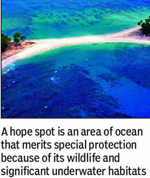 Andamans declared new 'hope spot'