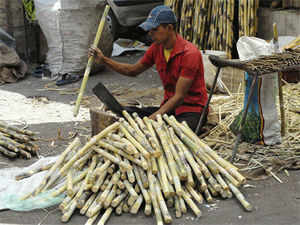 """""""Karnataka has moved towards a revenue-linked formula for cane pricing. Maharashtra is expected to introduce a bill on it in the assembly very soon."""""""