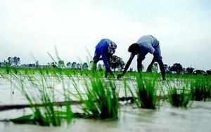 Regional parties, BJP come together demanding pro-farmer policies