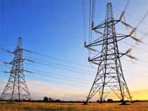 Shares of power cos gained momentum in a range-bound trade as FM in his interim Budget speech said power sector will add 50,000 mw of capacity.