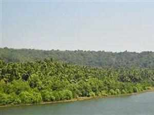 Since FRA came into force, 12.8 lakh land titles covering 18.80 lakh  hectares of forest land have been distributed in the country under the  Scheduled Tribes and Other Traditional Forest Dwellers Act in the last  five years.