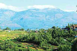 The environment ministry had recently clarified that there was to ban agriculture and plantation activities along the WesternGhats.