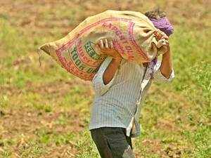 FinMin is drawing up a plan to facilitate direct selling platforms for fruit and vegetable farmers, to cut out middlemen and contain food inflation.
