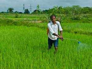 Dhanuka Agritech Ltd today said it has drawn up a Rs 50 crore plan for setting up a pesticides formulation facility at Kotputli, Rajasthan.