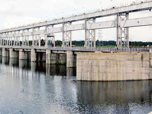 Faced with inordinate delays in their execution, the power ministry has suggested Arunachal Pradesh to scrap as many as half the nearly 100 hydroelectric projects awarded to private