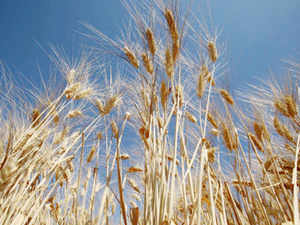 The monsoon deficit and high temperatures, delaying crop planting, are giving jitters to the govt that needs a good harvest to prop up the shaky economy and curb inflation