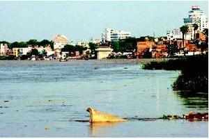 Swami Poornanand Saraswati has been protesting quarrying and stone crushing in the ecologically sensitive areas along Ganga river.