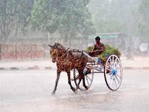 NorthKarnataka, Maharashtra, Gujarat andRajasthanbesides some areas in central India have seen weak rainfall this season.