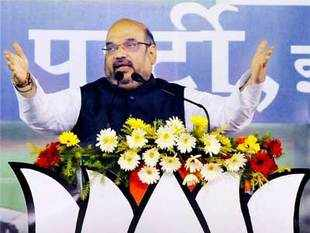 Amit Shah spoke on a range of issues — love jihad, Rajnath Singh, communal tensions in UP and party's prospects in the upcoming state elections.