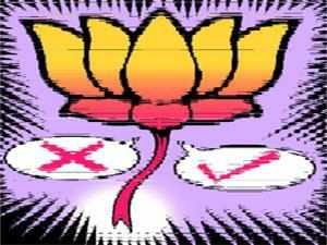 The opposition BJP in Assam today said it hopes to win majority of the 74 municipal boards and town committees during the elections of these bodies next month.
