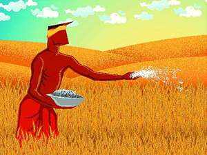 Several nations ban import of pesticide-laced items: HC told - The