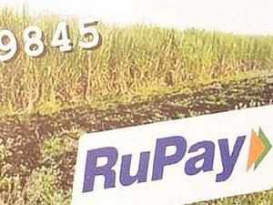 """We are planning to go for pilot of a virtual RuPay card over the next 4-5 months,"" NPCI Managing Director and Chief Executive A P Hota said."