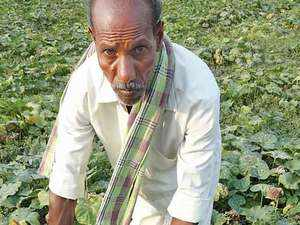 A delayed monsoon, failed sowings, unseasonal rains and unreliable power supply to agriculture pumpsets - in a state where farming is largely borewell dependent - are taking their toll, with mounting debts pushing farmers to the brink.