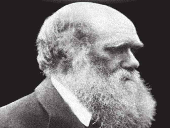 an analysis of the evolution theory proposed by charles darwin Charles darwin put forth a coherent theory of evolution and amassed a great body of evidence in support of this theory he proposed organic evolution as the explanation for the physical similarity among groups of organisms the core of darwin's theory is natural selection.