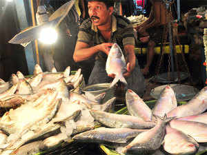 The mechanized sector had been targeting the high-value hilsa shad and hence the marked drop in activity has resulted in steep decline of 87% in landings.