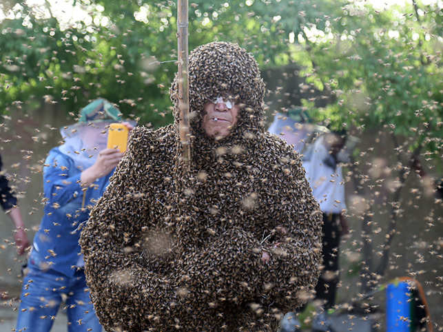 Gao Bingguo, a 55-year-old beekeeper from Tai'an City, took the challenge on Monday by having beekeepers pour the insects onto his body.