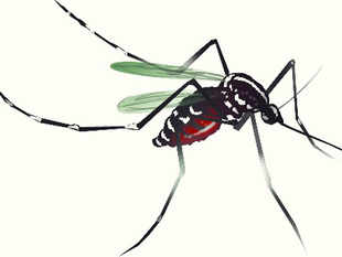 Aviral Resources said its machines guarantee a higher degree of effectiveness in getting rid of the pesky mosquitoes, attracting them by mimicking the body temperatures of humans and animals, heartbeats, odours and even skin texture.