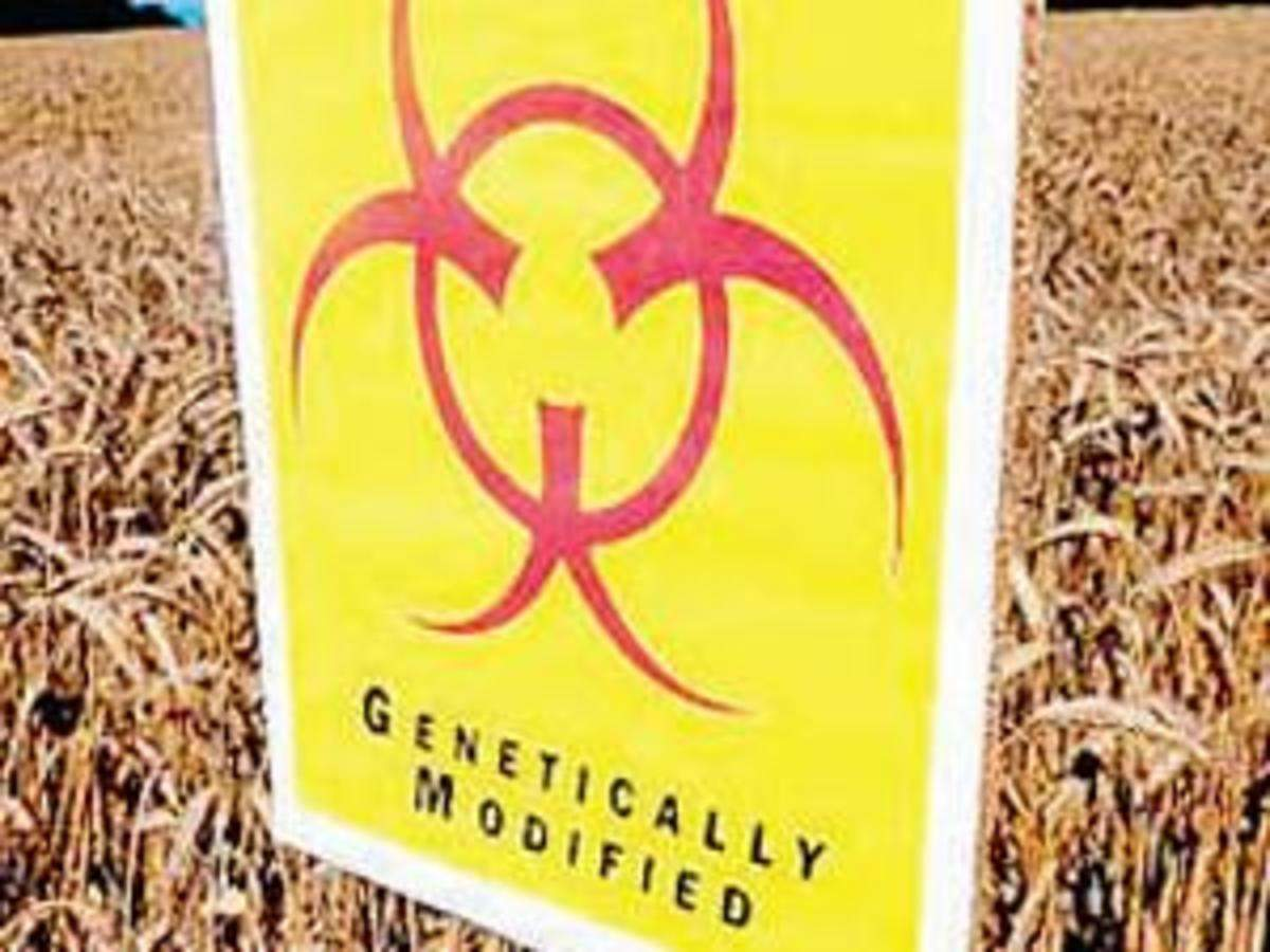 CNRI bats for GM crops to combat climate change - The