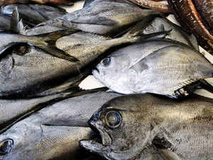 Punjab extends 50 per cent subsidy on fish farming to all districts