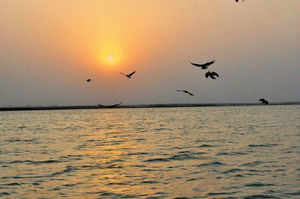 The missive to the commission follows the government's assertion that it does not want any obstacle in the way of its deadline to clean the river stretch along 11 major towns\cities, including Haridwar, Kanpur, Allahabad, Varanasi, Patna and Kolkata, in the next three years.