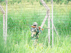 Eight companies of Border Security Force (BSF) have been deployed in the border range.