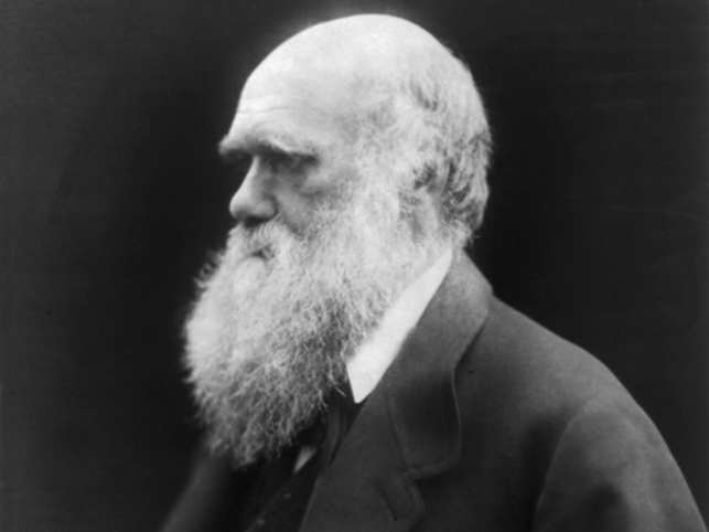 The subject of Darwin's religiosity had long been a cause of vehement debate.Darwin's letter is a reply to a young barrister named Francis McDermott.