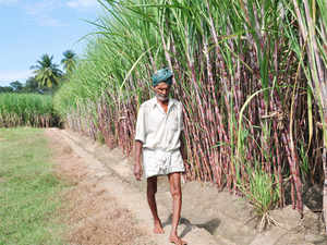 Sugar prices have firmed up by Rs 2-3 a kg to Rs 25-27 a kg in wholesale market in the last one month due to pickup in festival season demand.
