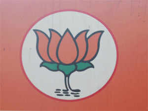 """A jubilant BJP today asserted that the party has """"written a new chapter"""" in Ladakh after sweeping the 26-member Ladakh Autonomous Hill Development Council, Leh (LAHDC) elections"""