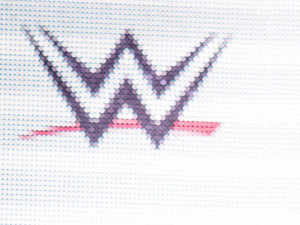 The WWE is all set to launch its WWE Network here in India on November 2 for hardcore fans of the professional wrestling promotion.