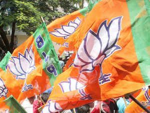 "BJP spokesperson Nalin Kohli called the party's victory in 18 of the 26 LAHDC seats ""historic and unprecedented""."