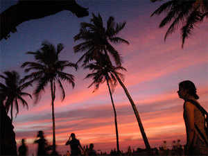 Social media aggregation web portals like 'Airbnb' and 'Couchsurfing' are unregistered services which pose regulators a huge challenge in Goa, claimed state tourism director Ameya Abhyankar.