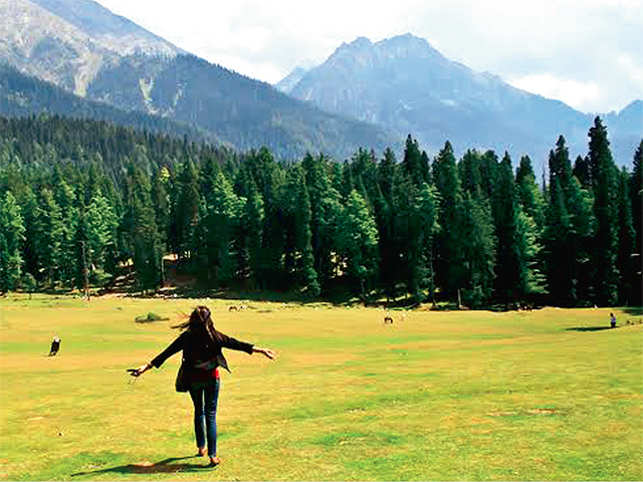 Embracing eco-tourism: Lush green environs of Pahalgam are apt for a wintry long weekend. (Pic shot by ET Panache Travel reader Pravin Rana)