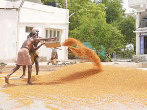 Dal prices are expected to cool down further in the coming days as state governments will release over 98,000 tonnes of seized pulses in the open market from next week.