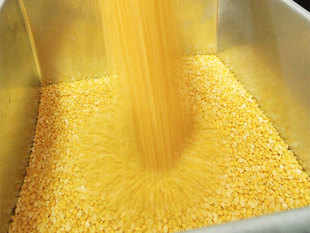 Government said pulses prices have fallen by an average Rs 20 per kg following raids on hoarders and the rates would ease further with the arrivals of kharif crops