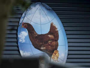 Live chicken consumption slows down
