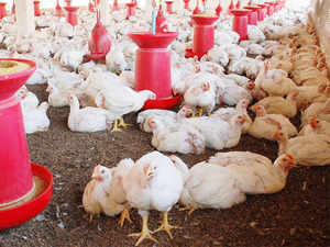In order to give fresh impetus to live stock sector in the state, a vision document 2025 has been submitted to Central Government, he said.